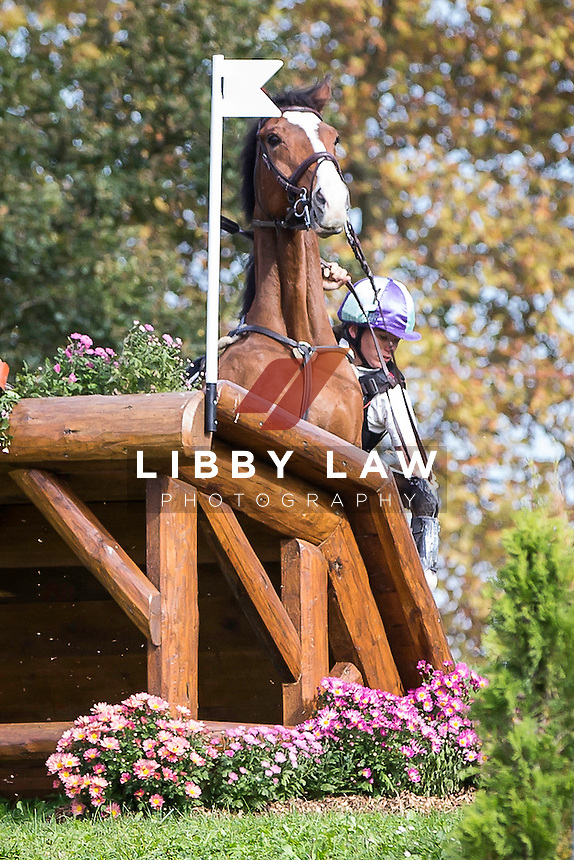 GBR-Victoria Madsen (BY CRIKEY) ELIM: CCI4* CROSS COUNTRY: 2014 FRA-Les Etoiles de Pau (Saturday 25 October) CREDIT: Libby Law COPYRIGHT: LIBBY LAW PHOTOGRAPHY - NZL