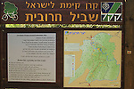 Israel, Shephelah, Haruvit trail in Haruvit forest