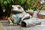 Bronze frog statue at Bellevue Botanical Gardens - closeup