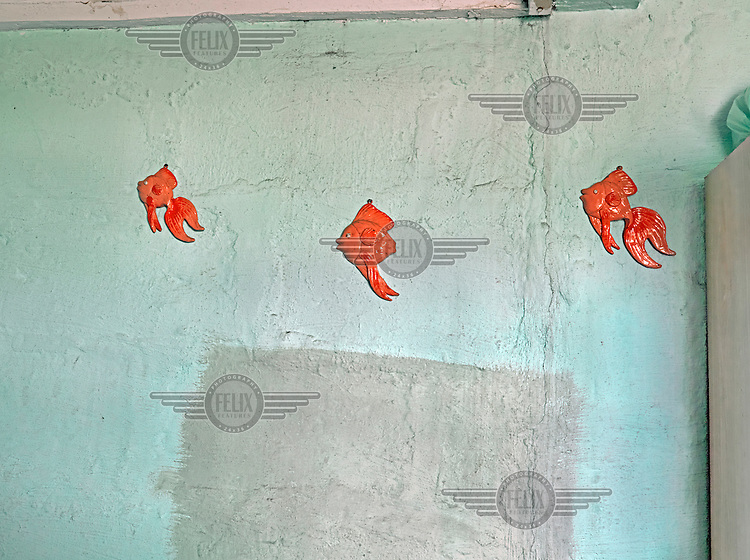 Three china goldfish on a bar wall. Graeme Williams' pictures of the environments occupied by some of South Africa's poorest people focus on the interiors and exteriors of people's homes, accentuating the minutiae of the occupants' day-to-day dwelling places. The bright colours captured in these photographs are suggestive of resilience, hope and a sense of humanity that survives in these poverty-stricken communities...