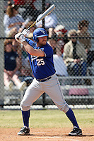 March 15, 2010:  Jason Clucas of the Wheaton College Lyons in a game vs SUNY Cortland at Lake Myrtle Park in Auburndale, FL.  Photo By Mike Janes/Four Seam Images