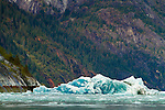 Edicott Arm in Alaska's Inside Passage. This area is part of the Tracy Arm-Fords Terror Wilderness in the Tongass National Forest