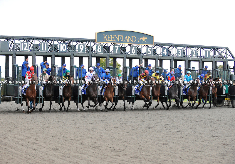 09 October 09: Negligee (no. 5), ridden by Rajiv Maragh and trained by John Terranova, wins the 58th running of the grade 1 Alcibiades Stakes for two year old fillies at Keeneland in Lexington, Kentucky.
