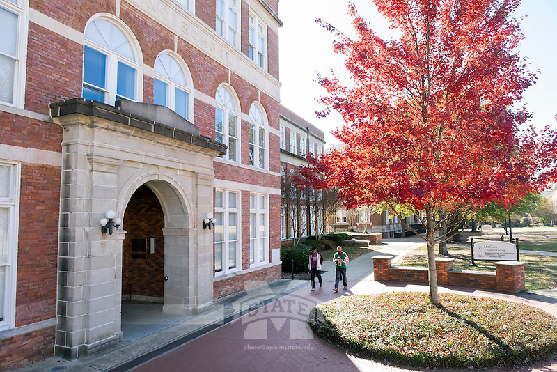 McCain with fall leaves.<br />  (photo by Megan Bean / &copy; Mississippi State University)