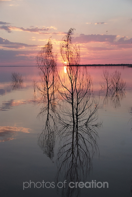 Sundown/Dusk at Lake Maraboon Emerald Qld
