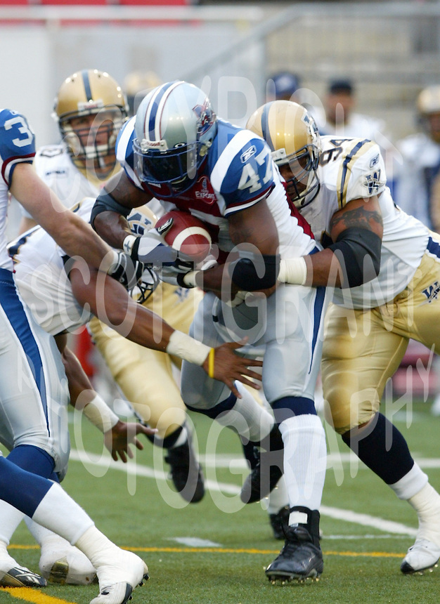 Robert Edwards Montreal Alouettes. Photo F. Scott Grant