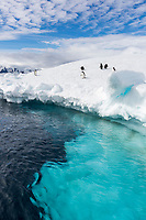 Brown Bluff, Antarctic Peninsula.