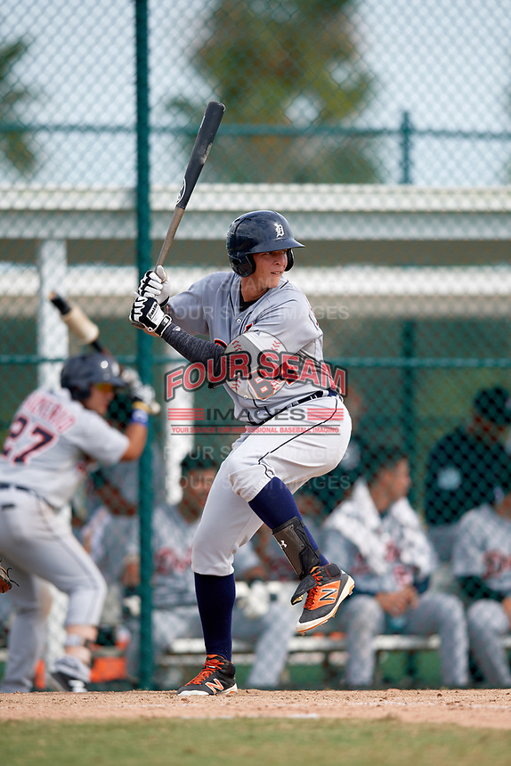 Detroit Tigers Julio Martinez (64) at bat during an Instructional League game against the Pittsburgh Pirates on October 6, 2017 at Pirate City in Bradenton, Florida.  (Mike Janes/Four Seam Images)