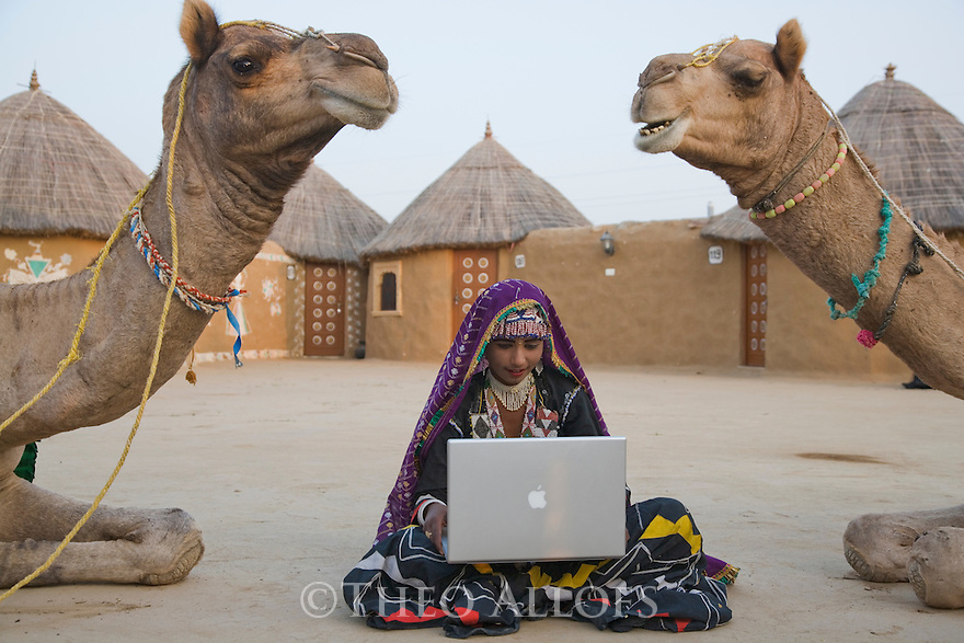 Rajasthani dancer in traditional costume with laptop sitting between curious camels in desert camp; Rajasthan, India --- Model Released