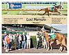 Lost Memory winning at Delaware Park on 9/20/12