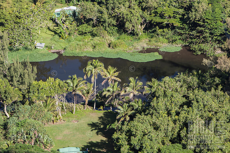 View of Waipi'o River and farmlands in Waipi'o Valley, Big Island.
