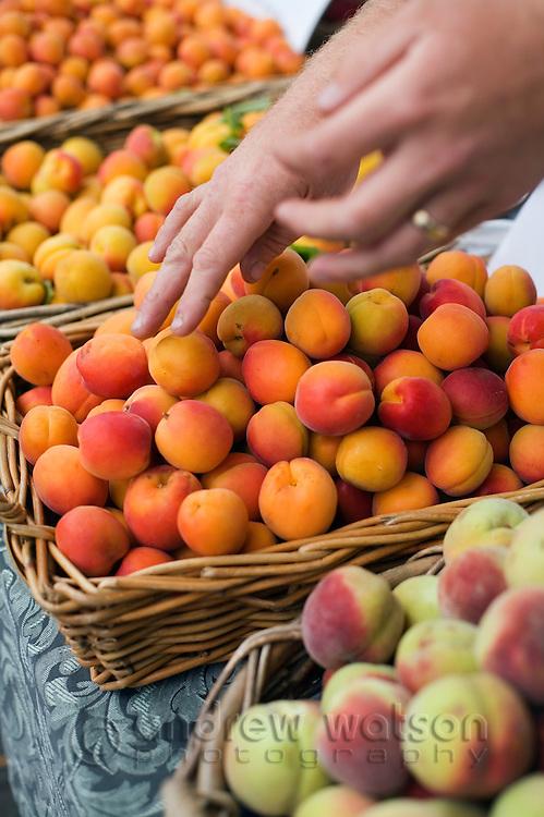 Fresh fruit at the weekly Salamanca Market, in Salamanca Place.  Hobart, Tasmania, AUSTRALIA