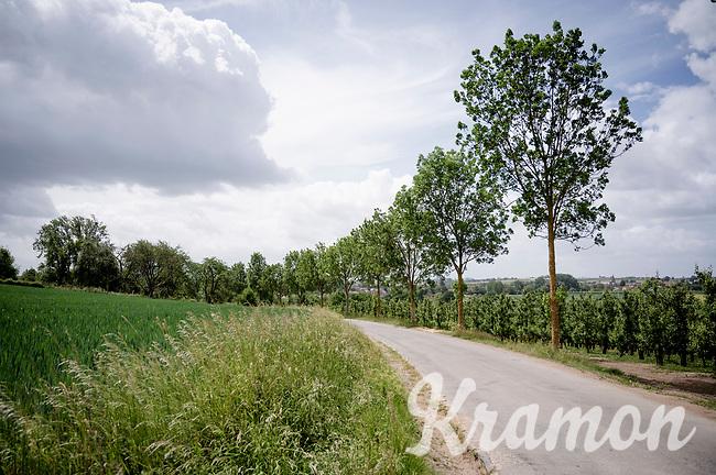 Zammelen Berg (in Kortessem)<br /> <br /> Limburg cycling hotspots<br /> Cycling In Flanders <br /> Flanders Tourist Board<br /> <br /> ©kramon