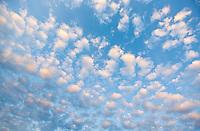 Cloud Pattern in the Sky