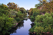 The Los Angeles River runs through the Sepulveda Basin Recreation Area, Los Angeles, California, USA