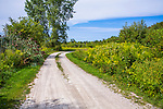 This Pastoral Scene Features A Dirt Road And The Surrounding Foliage During Summer Near The Shore Of Lake Erie In New York State And Very Near The Pennsylvania Border, USA