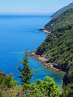 Punta Falconaia bei Bagnaia, Elba, Region Toskana, Provinz Livorno, Italien, Europa<br /> Punta Falconaia near Bagnaia, Elba, Region Tuscany, Province Livorno, Italy, Europe