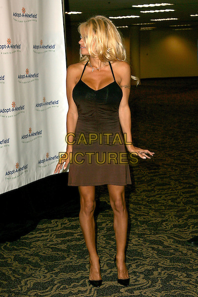 PAMELA ANDERSON.The 4th Annual Benefit Gala for Adopt-A-Minefield held at The Century Plaza Hotel in Century City, California.October 15th, 2004.full length, brown dress, ruched, profile.www.capitalpictures.com.sales@capitalpictures.com.©Debbie Van Story/Capital Pictures