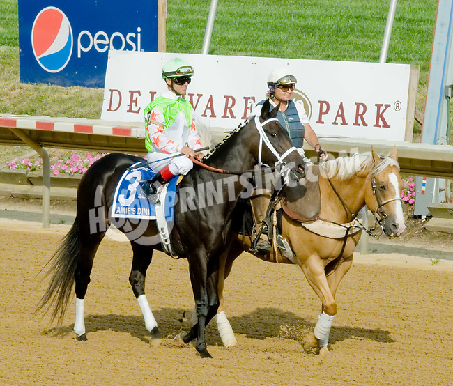 Amie's Dini before The Delaware Oaks (gr 2) at Delaware Park on 7/14/12