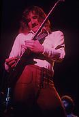 JOE WALSH (VINTAGE 1970'S)