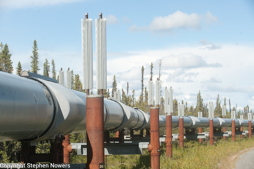 The Trans-Alaska Pipeline near the city of Glennallen.