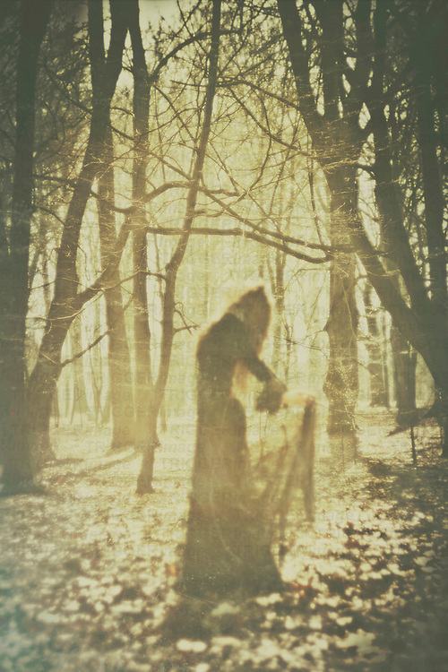 A woman in a black vintage gown, with brown long hair, dancing among the tress