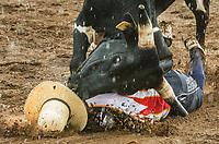 RAM Rodeo'17 0624&25 MINDEN