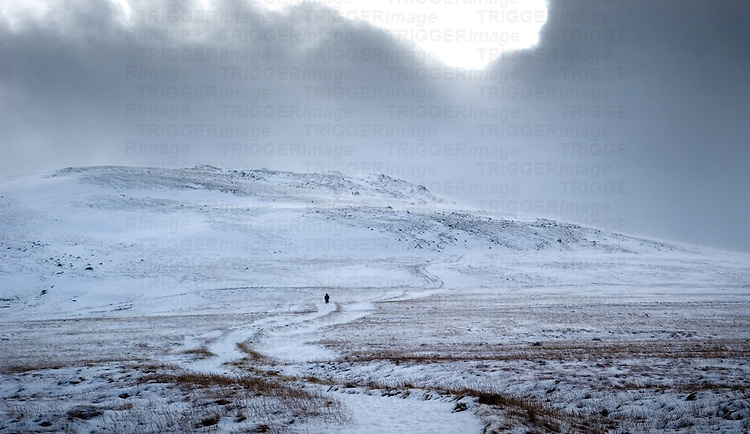 A lone figure in the distance of a snowy landscape