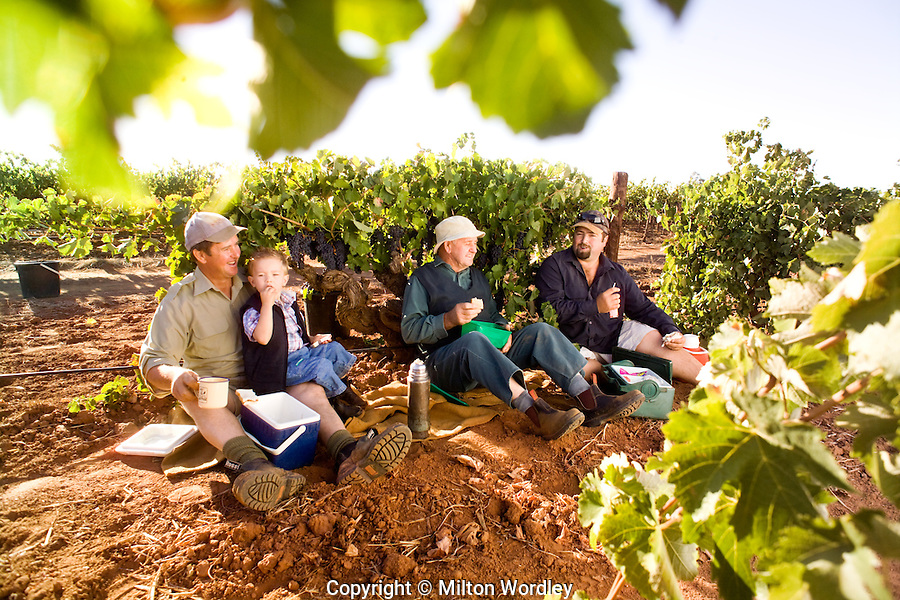 Four Generations of grape growers in the Barossa Valley