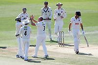 Darren Stevens of Kent celebrates with his team mates after taking the wicket of Alastair Cook during Kent CCC vs Essex CCC, Specsavers County Championship Division 1 Cricket at the St Lawrence Ground on 20th August 2019