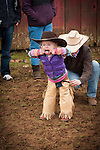 Calf marking at the Wooster Ranch, Red Barn, Calaveras County, Calif...Bretta Brooks