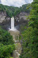 Taughannock Falls in New York state in the Finger Lakes region is one of the highest falls in the easetern US at 215 feet.  The hi water flow is not typical of summer months but more than 8 inches of rain in a little more than a week created this tremendous flow.  Tompkins County, New York