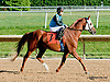 A Lady's Man at Delaware Park on 9/19/13