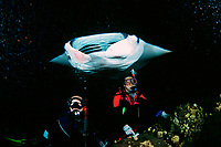 scuba divers and reef manta ray, Manta alfredi, feeding at night, Kona, Big Island, Hawaii, Pacific Ocean