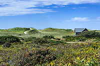 Dune shack, Aquinnah, Martha's Vineyard, Massachusetts, USA.