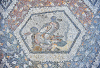 3rd century AD Roman mosaic panel of two mallard ducks from Thugga, Tunisia.  The Bardo Museum, Tunis, Tunisia.