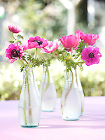 Deep pink anemones are displayed in four glass bottles in a simple and pretty arrangement