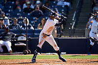 New York Yankees Rosell Herrera (12) bats during a Spring Training game against the Toronto Blue Jays on February 22, 2020 at the George M. Steinbrenner Field in Tampa, Florida.  (Mike Janes/Four Seam Images)
