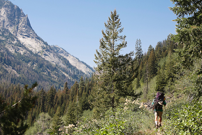A backpacker on the Tin Cup Trail in Montana's Bitterroot Mountain Range