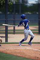 Ronny Brito - Los Angeles Dodgers 2016 extended spring training (Bill Mitchell)