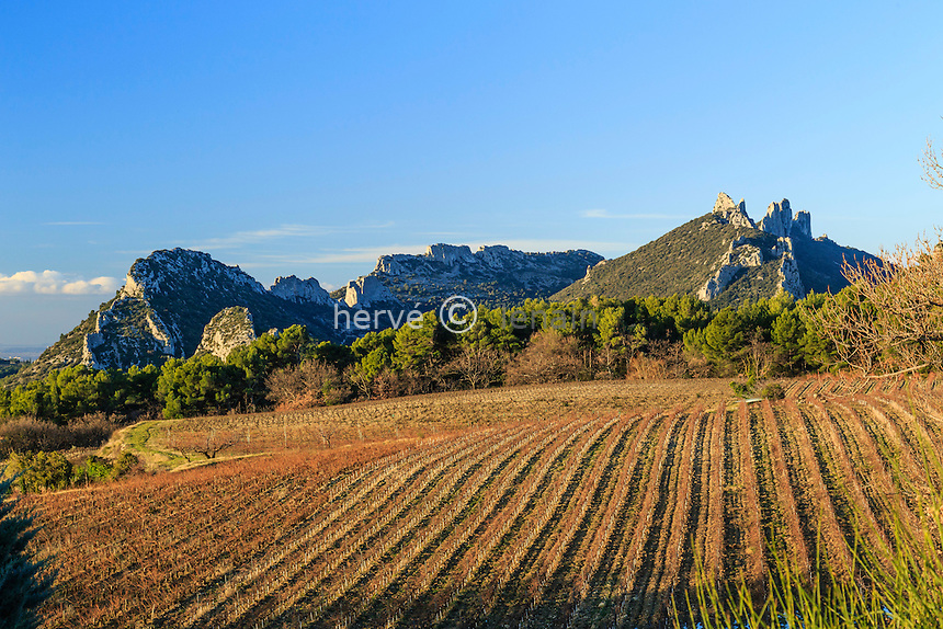 France, Vaucluse (84), Suzette, les Dentelles de Montmirail et le vignoble