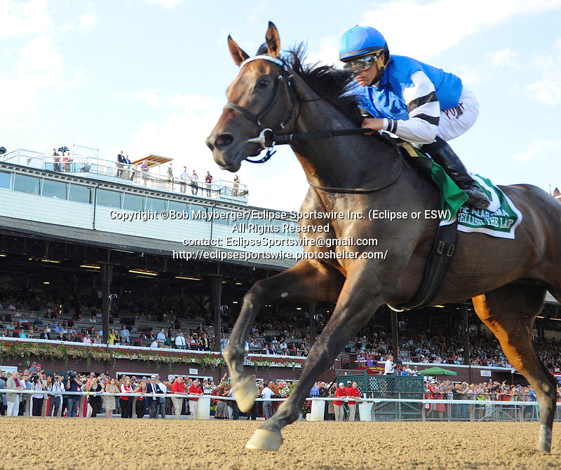 Embellish the Lace (no. 5), ridden by Javier Castellano and trained by Anthony Dutrow, wins the 135th running of the grade 1 Alabama Stakes for three year old fillies on August 22, 2015 at Saratoga Race Course in Saratoga Springs, New York. (Bob Mayberger/Eclipse Sportswire)