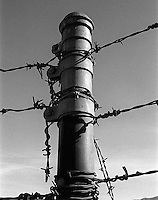 Fence post near Del Valle, 1987.   &amp;#xA;<br />