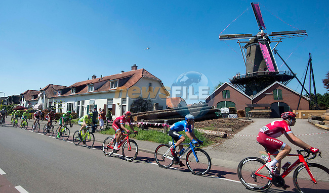 The peloton pass a windmill during Stage 3 of the 2016 Giro d'Italia running 190km from Nijmegen to Arnhem, The Nethrerlands. 8th May 2016.<br /> Picture: ANSA/Claudio Peri | Newsfile<br /> <br /> <br /> All photos usage must carry mandatory copyright credit (&copy; Newsfile | ANSA/Claudio Peri)
