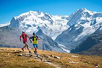 Trail running above Zermatt, Switzerland with Monte Rosa in the background.