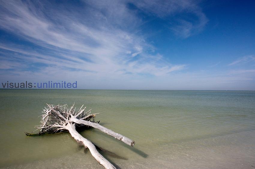 De Soto Park beach, near Tampa, Florida, USA
