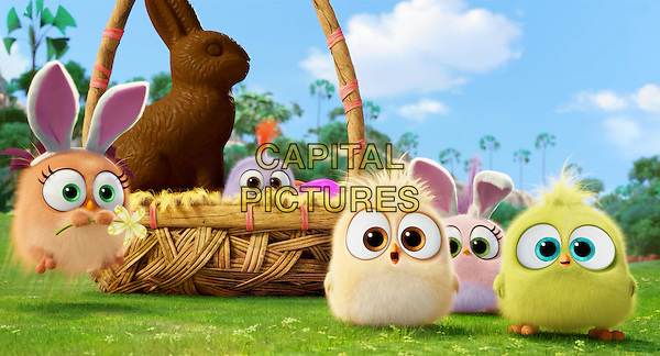 The Angry Birds Movie (2016) <br /> Hatchlings<br /> *Filmstill - Editorial Use Only*<br /> CAP/KFS<br /> Image supplied by Capital Pictures
