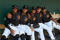 GCL Orioles (L-R) Frank Tolentino, Davis Tavarez, Darell Hernaiz, Andrew Martinez, and Edidson Rojas during a Gulf Coast League game against the GCL Red Sox on July 29, 2019 at Ed Smith Stadium in Sarasota, Florida.  GCL Red Sox defeated the GCL Pirates 9-1.  (Mike Janes/Four Seam Images)