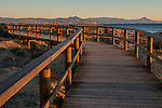 Wooden Boardwalk, Arenales  del Sol beach, Alicante, Spain Europe