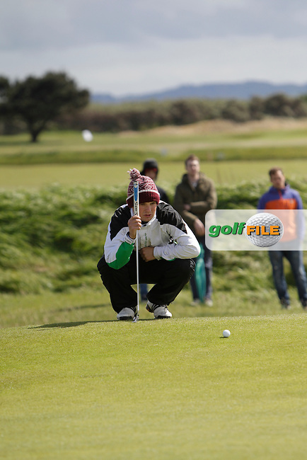 Jack Hume (Naas) on the 17th during Round 4 of The Irish Amateur Open Championship in The Royal Dublin Golf Club on Sunday 11th May 2014.<br /> Picture:  Thos Caffrey / www.golffile.ie